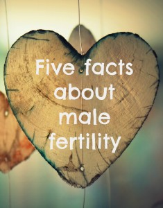Five facts about male fertility you might not be aware of. How many do you know? Read more at TalkMum.com