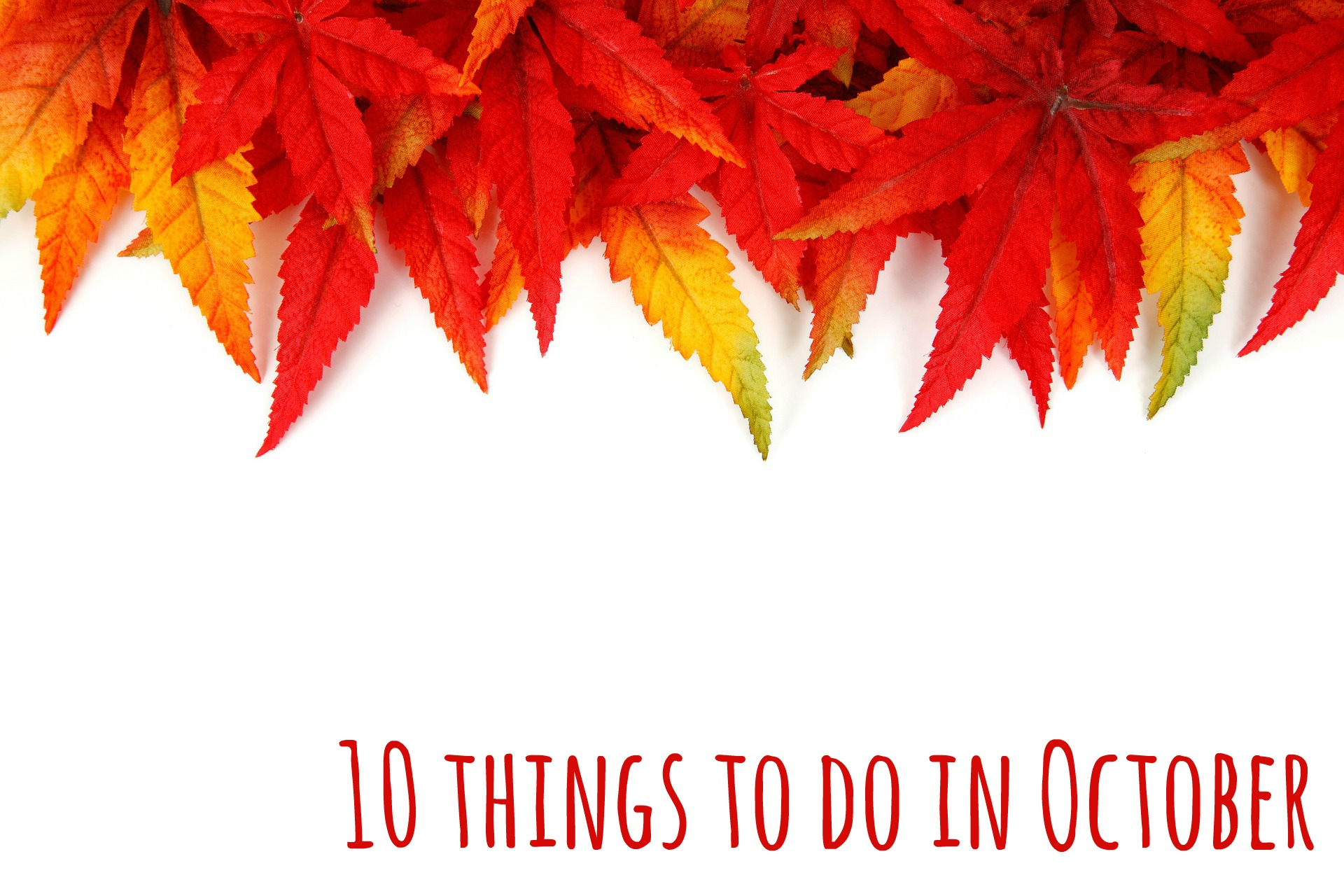 10 things to do in October - a list of the best things for families and small children
