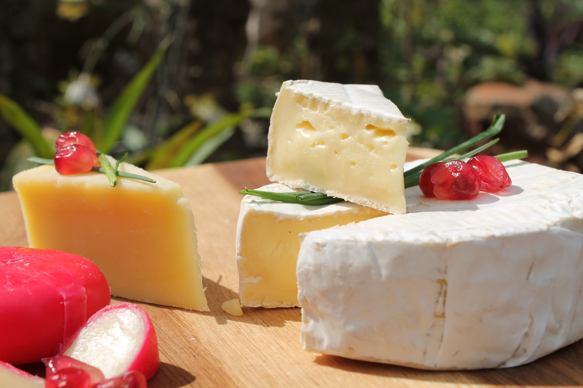Eat milk and cheese to help you fall pregnant - fertility-boosting food