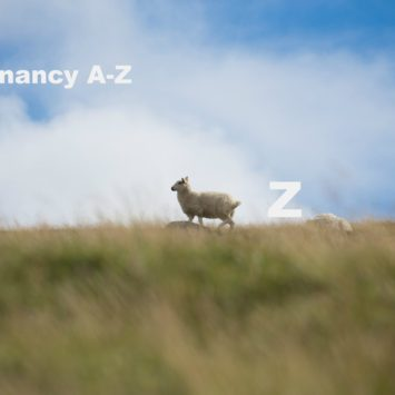 A-Z of pregnancy and nutrition: Z is for…