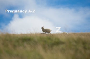 Pregnancy A-Z - What does Z stand for in pregnancy?