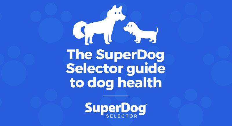 The SuperDogSelector guide to dog health
