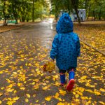 brilliant things to do in autumn