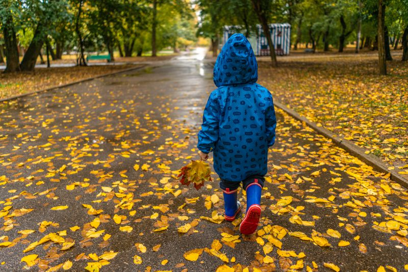 10 brilliant things to do with children in Autumn